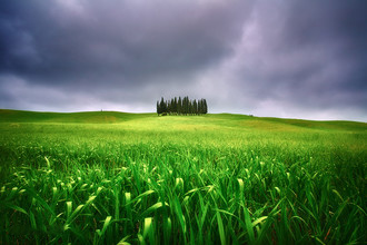 Countryside - Fine art landscape photographs